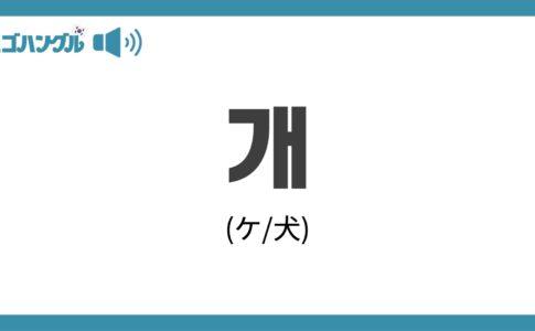 韓国語で「犬」を表す「개(ケ)」について優しく解説